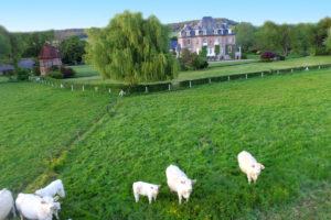 sejour-campagne-grandcourt-chezelles-normandie